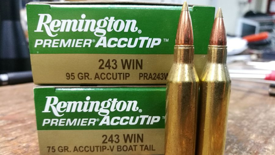 243 Winchester Remington Premier Accutip